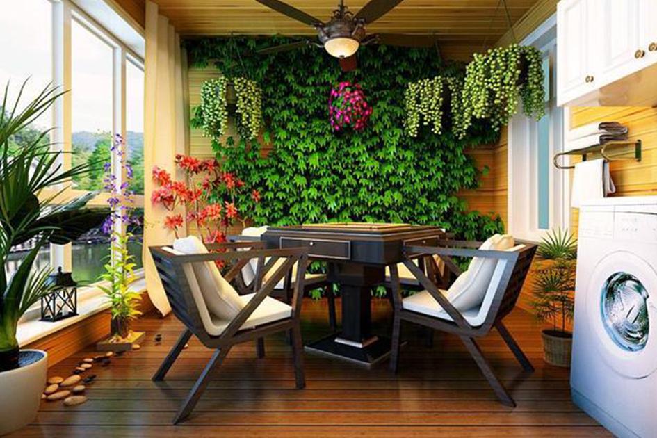 室内如何养殖绿植